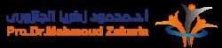 د/ محمود زكريا الجنزورى
